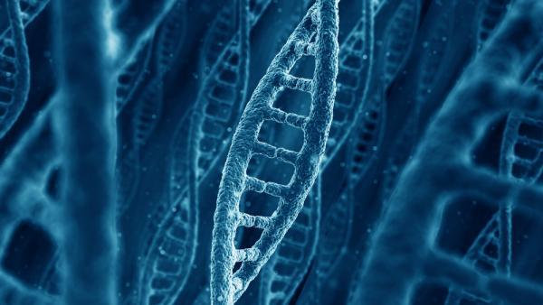 Cientistas criam transistor feito com DNA