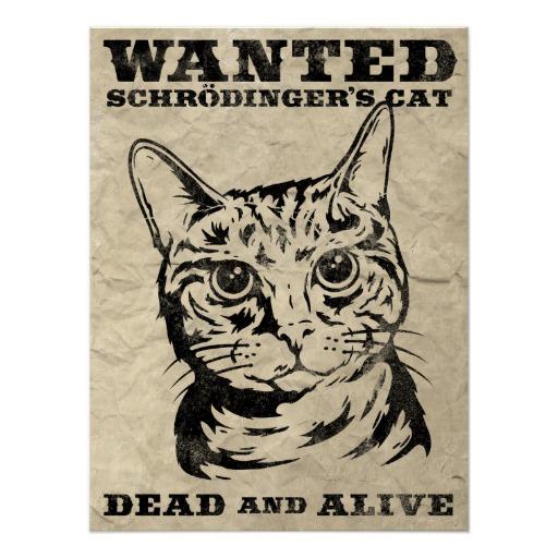 o_gato_de_schrodinger_quis_inoperante_ou_vivo_poster-rb5343cbe8b544d8bb2bcae895ee346ca_wv4_8byvr_512