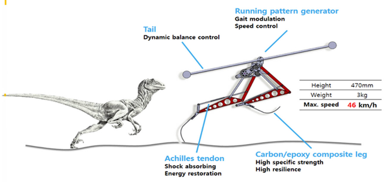 Raptor-diagram