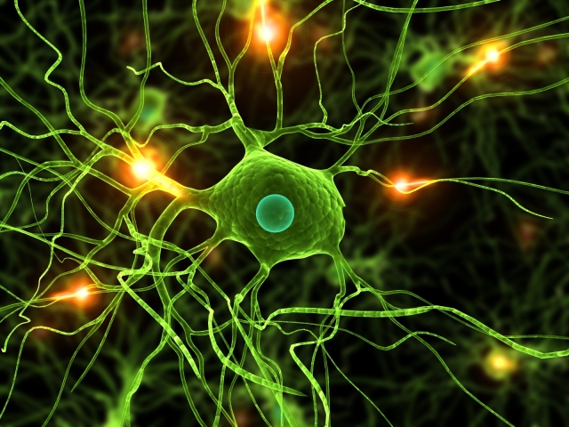 Brain-Neuron-Wallpaper-4